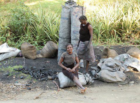 Landarbeiterinnen warten mit Kohlesäcken auf einen LKW, der sie abholt.  Oktober 2010, Terrier Rouge, Norden von Haití