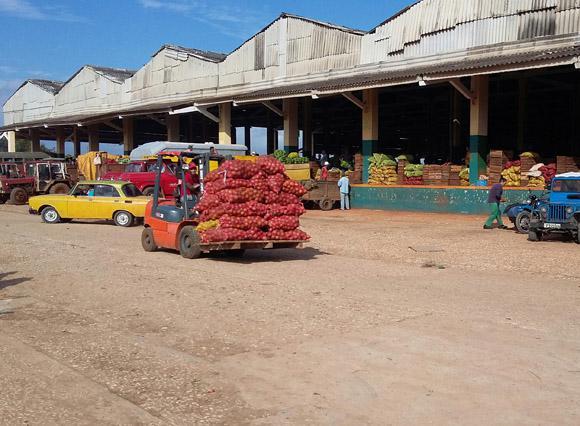 Der Lebensmittelmarkt El Trigal befindet sich auf einem 16.000 Quadrtameter großen Gelände in Havanna
