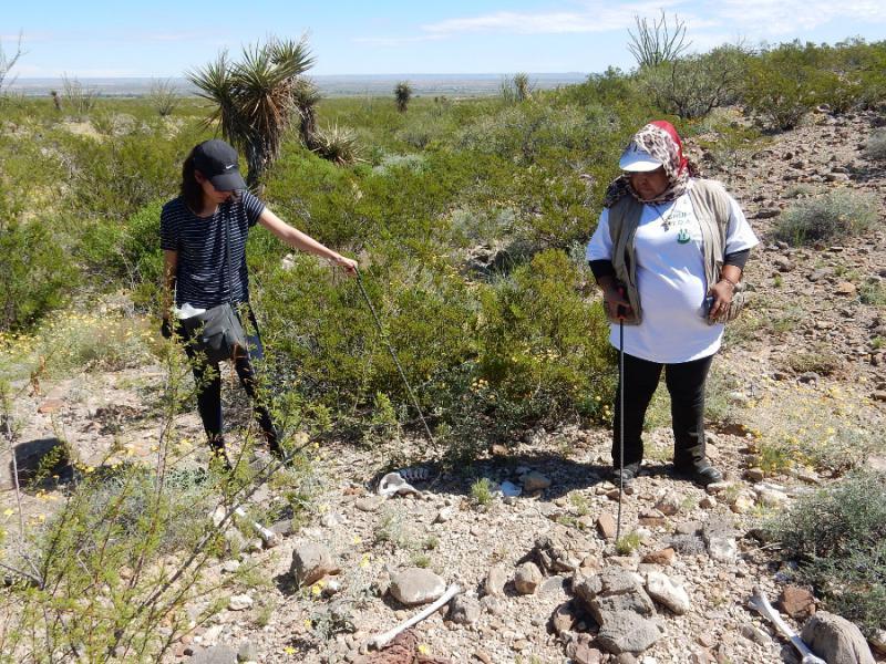 Teilnehmende der Suche bei Knochenfunden im Juáreztal