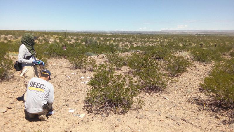 Zwei ForensikerInnen sichern den Tatort, dort, wo Familienangehörige Knochen im Juáreztal gefunden haben