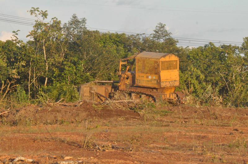 Eine Raupe zerstört tropischen Wald im Bundesstaat Tocantins, um Flächen für die Soja-Produktion frei zu machen.