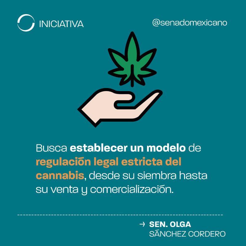 Senatorin Olga Sánchez Cordero von der Partei Morena legte den Gesetzentwurf zur Entkriminalisierung des Cannabis-Konsums dem Senat von Mexiko vor