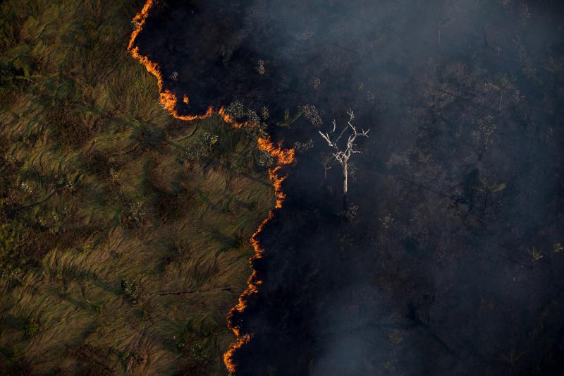 Einer der zahlreichen Brände im Amazonaswald, hier im brasilianischen Bundesstaat Rondônia