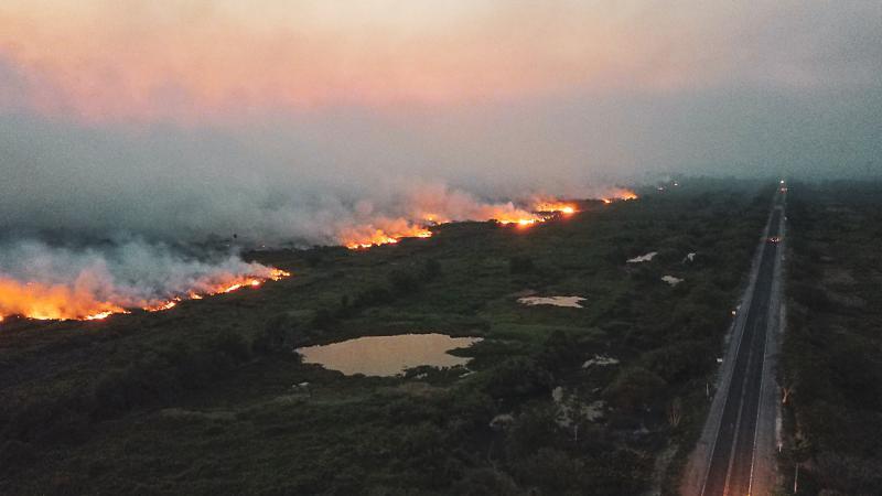 Über 2.700 Brandherde hat es im brasilianischen Pantanal in den ersten zwei Oktoberwochen gegeben