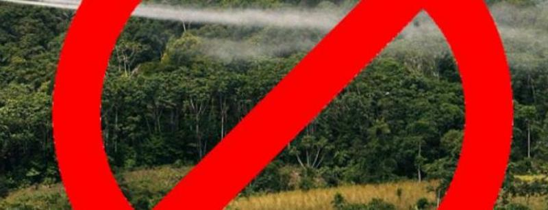 Gemeinschaften und Organisationen aus diversen Regionen lehnen Pläne zur Wiederaufnahme der Glyphosat-Besprühung ab