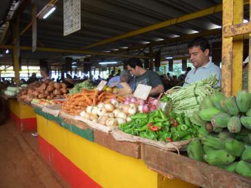 Agrarmarkt in Kuba: Bald mit mehr privaten Bauern