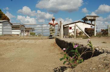 Auf einem Agrarprojekt der deutschen Organisation Cuba Sí