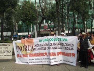Mitglieder der Bauernorganisation UNORCA protestieren