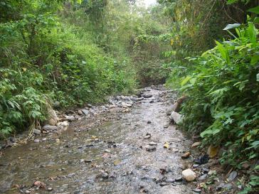Der Río Castán in Venezuela