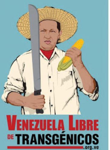 """Der frühere Präsident Hugo Chávez als Landarbeiter auf dem Plakat der Kampagne """"Venezuela – frei von transgenem Saatgut"""""""