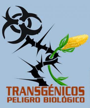 """Plakat: """"Gentechnisch verändertes Saatgut - Biologische Gefahr"""""""