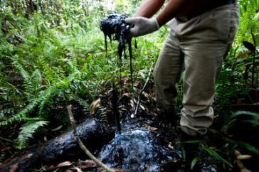 Umweltschäden: Infolge der Aktivitäten von Chevron-Texaco wurden in Ecuador über 480.000 Hektar Regenwald verschmutzt