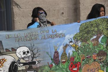 """Protest gegen Monsanto in Campeche. Schriftzug auf dem Transparent: """"Im Kampf für die Nahrungsautonomie"""""""