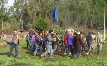 Rund 40 Angehörige der Mapuche-Gemeinde Ranquilco haben vergangene Woche mit der Besetzung begonnen
