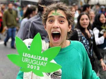Seit Dezember darf jeder Erwachsene in Uruguay monatlich bis zu 40 Gramm Marihuana kaufen oder die Pflanzen selbst anbauen