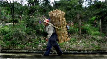 Kleinbauern in Kolumbien – Verlierer des Freihandels