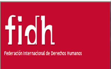 Logo der FIDH