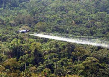Einsatz von Herbiziden gegen Coca-Pflanzungen im kolumbianischen Regenwald