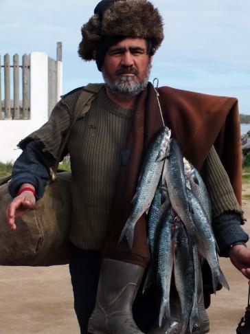 Kleinfischer in Chile