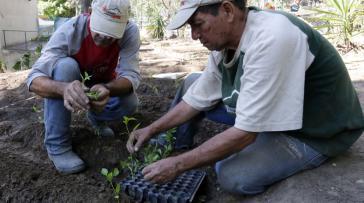 Venezuelas Regierung will die einheimische Nahrungsmittelproduktion verstärken
