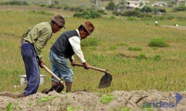 Ungenutztes Land soll an Kleinbauern und Unternehmen der Solidarischen Ökonomie verteilt werden