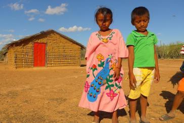 Insgesamt sind in den letzten neun Jahren circa 5.000 Wayuu-Kinder durch Krankheiten, Mangelernährung und Durst umgekommen