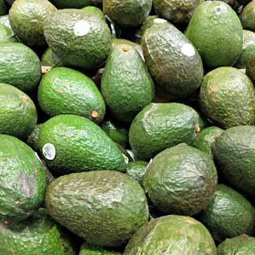 Die Produktion von Avocados benötigt in trockenen Regionen wie Petorca in Chile