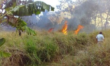 Sicherheitskräfte schütteten Benzin auf Felder der von Bauern besetzten Ländereien und zündeten sie an