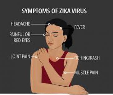 Symptome des Zika-Virus, HRW fordert von Brasiliens Behörden mehr Aufklärung darüber