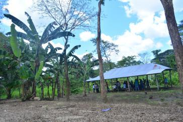 Zurückgekommen um zu bleiben: Vertriebene Bauernfamilien haben sich in Caño Limón wieder angesiedelt