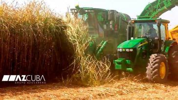 Zuckerrohrernte in Kuba