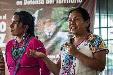 Reist durch Mexiko, um die notwendigen Unterschriften für ihre Kandiatur bei den Präsidentschaftswahlen zu erreichen:  María de Jesús Patricio Martínez