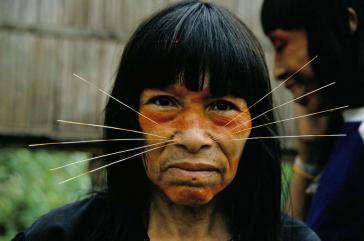 Auch die Matsés, eine der unkontaktierten indigenen Gruppen am Amazonas in Peru, fordern die Anerkennung ihrer Landrechte