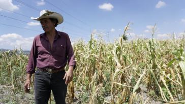 Der Landwirt Oscar Huey vor einem seiner vertrockneten Felder