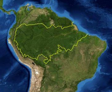 Der Amazonas-Regenwald umfasst sechs Millionen Quadratkilometer in neun Ländern Der weitaus größte Teil, etwa 60Prozent, befindet sich in Brasilien