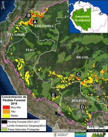 Im westlichen Amazonasgebiet sind 2018 fast eine Million Hektar Wald verloren gegangen