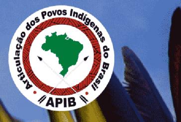 Die internationale Aktion wurde von der Koordination indigener Völker Brasiliens (Apib) organisiert