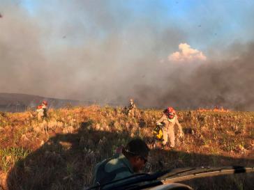 Montag, 26. August: Feuerwehrleute im Bundesstaat Mato Grosso bekämpfen Waldbrände