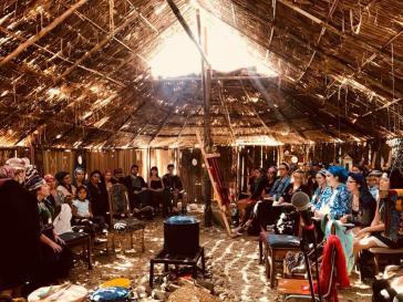 Indigener Feminismus, Frauennetzwerke und feminismos populares - eine Botschaft aus der Mapuche Kunstschule in Chile zum 8. März 2019