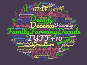 In diesem Jahr hat die Dekade der Familienlandwirtschaft (2019-2028) der Vereinten Nationen begonnen