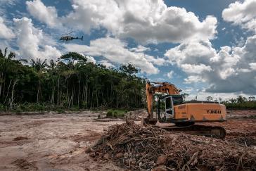 Die Abholzung im Amazonas erreicht in diesem Jahr neue Rekordwerte. Umweltzerstörungen erhöhen das Risiko von Pandemien