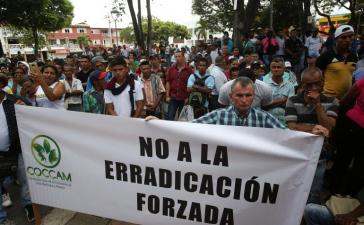 Kokabauern protestieren gegen die gewaltsame Zerstörung ihrer Felder