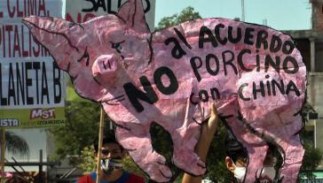 Die Proteste in Argentinien gegen die Massenproduktion von Schweinefleisch nehmen zu