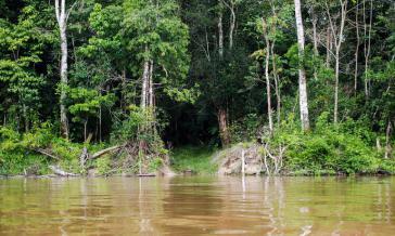 In der ersten Phase des Programms geht es um 132 Schutzgebiete
