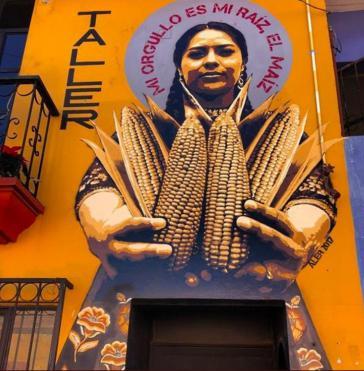 """""""Mein Stolz ist meine Wurzel, mein Mais"""" steht auf einem Wandbild in Mexiko"""