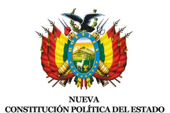 Bald voll in Kraft: Neue Verfassung Boliviens