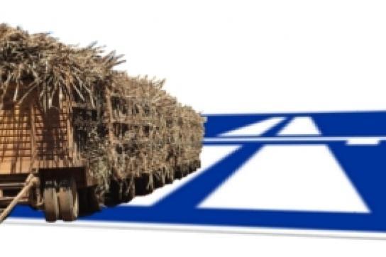 Agrotreibstoffe für Autobahnen