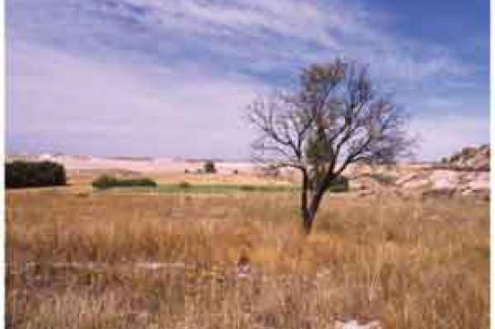 Ausgetrocknete Landschaft