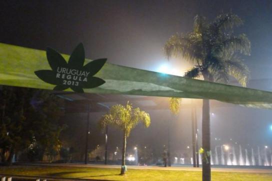 Plakat in Form eines Hanf-Blattes aus der Kampagne zur Legalisierung