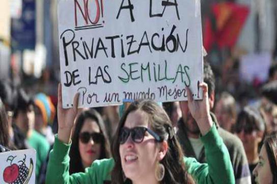 """Demonstrantin mit Plakat """"Nein zur Privatisierung der Samen"""""""